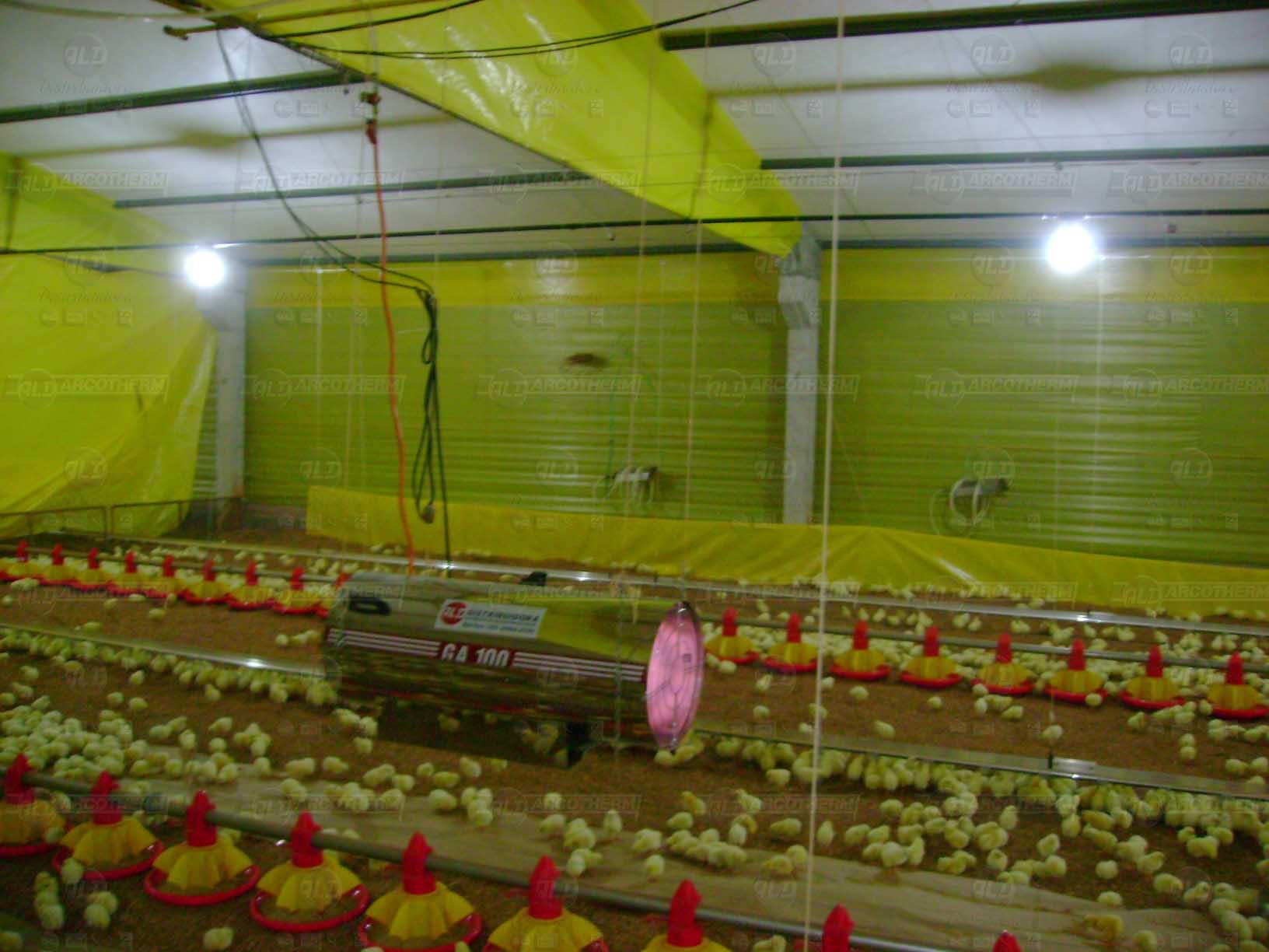 Granja - galpao frango de corte - aquecedor - gerador de ar quente - arcotherm- 4