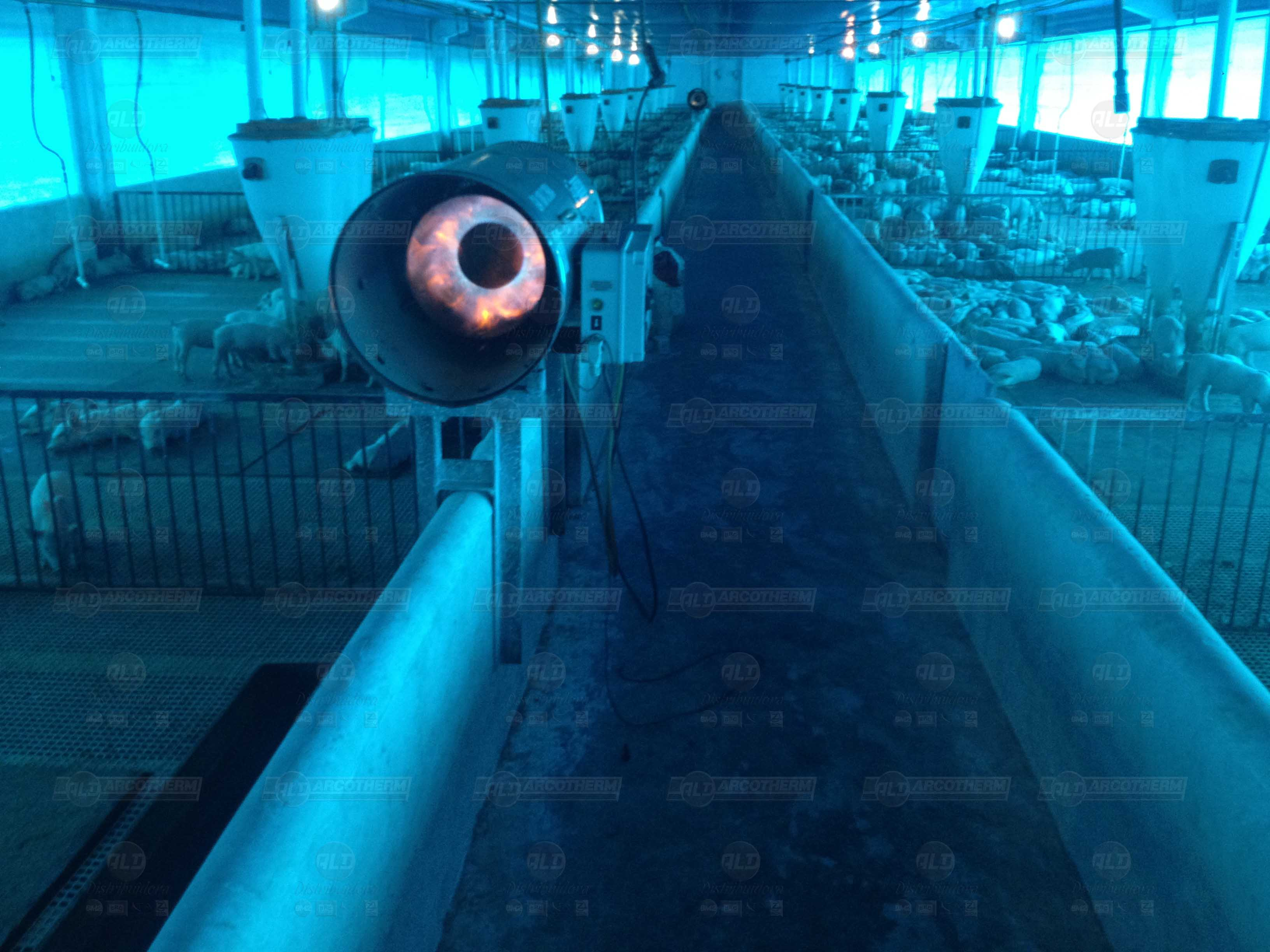 Suinos - galpao recria de leitoes - UPL - aquecedor - gerador de ar quente - arcotherm- 3