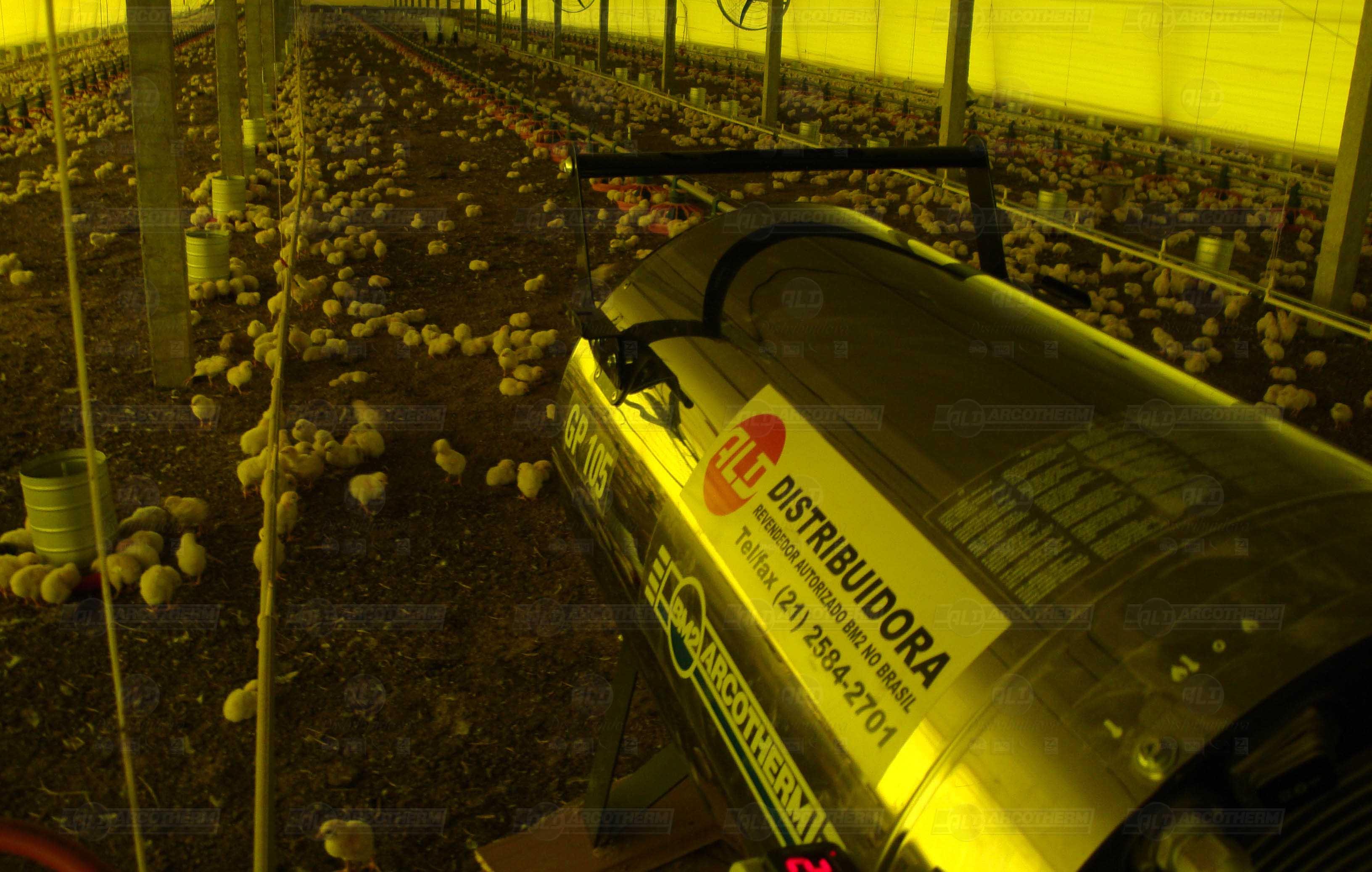 Granja - galpao frango de corte - aquecedor - gerador de ar quente - arcotherm- 6