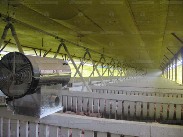 Suinos - galpao recria de leitoes - UPL - aquecedor - gerador de ar quente - arcotherm- 4